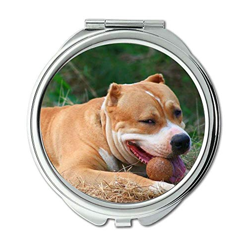 Yanteng Spiegel, Schminkspiegel, Hündchen niedlichen Hund Kostenloser Download, Taschenspiegel, 1 X 2X Lupe