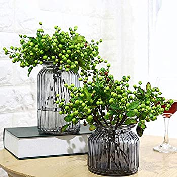 Best green hypericum berries Reviews