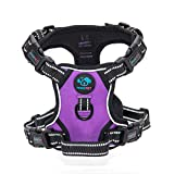 PHOEPET Updated No Pull Dog Harness Reflective Puppy Vest +Training Handle +2 Metal Hooks +4 Snap Buckles +4 Slide Buckles(XS,Purple)