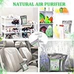 Activated Bamboo Charcoal Bags, Natural Air Purifying Fresheners,Moisture Remove for Home, Car, Closet, Bathroom (8 x… 13 NATURAL AIR PURIFIER-->>100% activated bamboo charcoal contains millions of tiny porous holes that naturally absorb and eliminate odors. This makes bamboo charcoal the perfect natural air freshener and odor remover. SAFE-->>Our activated charcoal air purifier bags are safe and effective, which has no fragrance or chemicals. They can purify your space air in the most natural, 100% safe way! It absorbs moisture and unpleasant odors like a sponge. These natural bamboo charcoal deodorizers are sure to be safe and you can leave it around your pets and your children while no worry for any incidents that might jeopardize their health. WIDE APPLICATIONS-->>The bamboo activated charcoal odor absorber bags has deodorizing and dehumidifying functions and which makes them work efficiently at any time and any place. It can be used in car,gym bag,smelly shoes,pet areas,bedroom,bathroom and fridge. Put the activated charcoal bag in these places, and it can absorb moisture or stink smell quickly and keep air fresh.