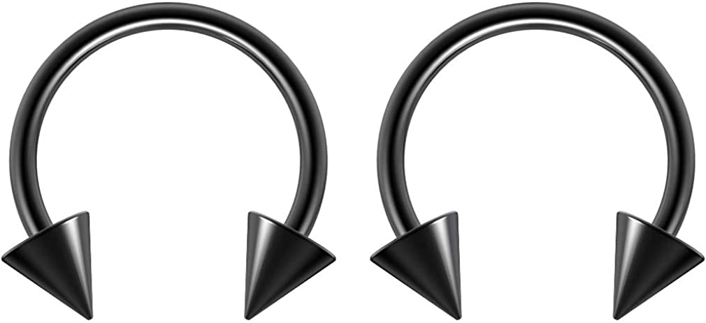 2pc Surgical Stainless Limited time trial price Steel Rose Black Rainbow Gold Great interest Horseshoe H