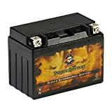 Replacement YTX9-BS Powersports Battery - Rechargeable - Maintenance Free - Absorbed Glass Matt - Pirate Battery