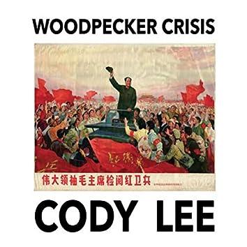Woodpecker Crisis