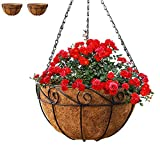 Gray Bunny Metal Hanging Planter Basket with Coco Liner, 2 Pack, 10 in Diameter, Hanging Flower Pot, Round Wire Plant Holder, Watering Basket, Chain Porch Decor, for Lawn, Patio, Garden, Deck