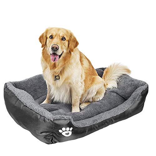 Cama Perros con Cojín, 54x42cm Cama para Mascotas, Cojín Perros Impermeable, Sofá para Perros Gatos Lavable, para Mascotas Pequeñas y Grandes - Negro, M