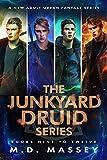 Junkyard Druid Books 9-12: An Urban Fantasy Boxed Set (Junkyard Druid Urban Fantasy Box Sets Book 3) (English Edition)