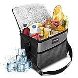 NASUM Bolsa de almuerzo con aislamiento plegable 600D tela Oxford impermeable, enfriador de bolsa de almuerzo térmica, correa de hombro portátil, para picnic / barbacoa / viajes / camping / playa / oficina / coche, gris (10L)