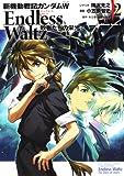 新機動戦記ガンダムW Endless Waltz 敗者たちの栄光 (2) (カドカワコミックス・エース)