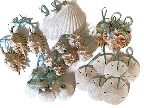 Tropical Seashell Christmas Ornament Package