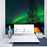 BBING COLOR 100x100 inches Wall Mural,Camping Tent Under Magnetic Field Nature Picture Peel and Stick Self-Adhesive Wallpaper Removable Large Wall Sticker Wall Decor for Home Office