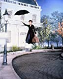 Julie Andrews 10 x 8 Werbe Foto Flying mit Schirm Mary
