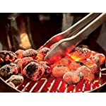 Weber 15301001 Performer Charcoal Grill, 22-Inch, Black 7