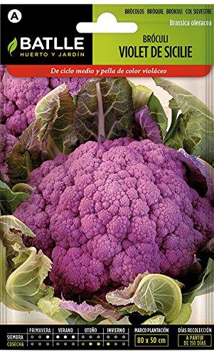 Semillas hortícolas de Batlle - Bróculi Violet de Sicile (Seeds)
