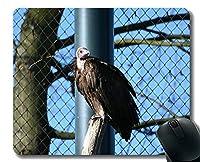 ユニークなカスタムマウスパッドマウスパッド、野生の猛禽ノンスリップラバーベースマウスパッド