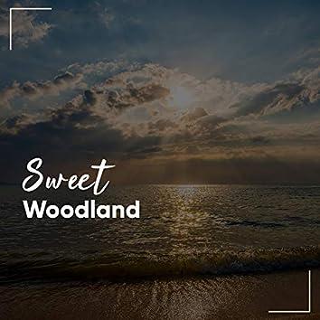 #Sweet Woodland