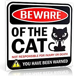 Bigtime Signs Beware of Cat Warning Sign