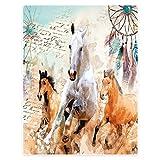 HommomH 50'x80' Blanket Soft Fluffy Flannel Fleece Throw Abstract Dream Catcher Horse
