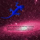 Future Retro Electronic Sound -New Age of Ambient Dub, Atomspheric Deep House Space Chill out, Minimal Underground Night Beats
