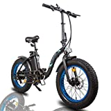 """ECOTRIC Powerful 500W Electric Folding Bicycle 20"""" Fat Tire Alloy Frame 36V/12.5AH Lithium Battery..."""