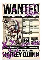 映画ポスター スーサイドスクワッド Suicide Squad ハーレークイン UK版 uk6 [並行輸入品]42×29.7cm