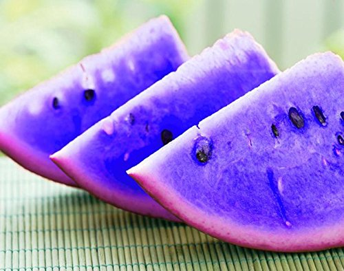 Vente! 30 PCS / Sac Blue Seeds chair de melon d'eau Graines de melon d'eau Bonsai plantes Semences non OGM Fruits comestibles Noir