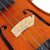 Immagine 2 forenza f2151g violino serie prima