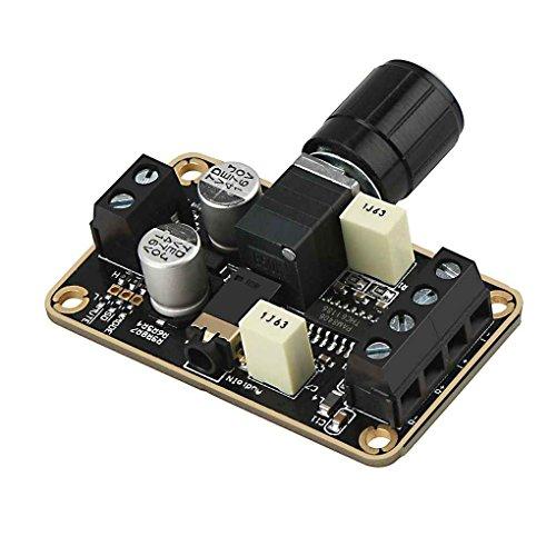PAM8406 5Wx2 Stereo Dual Channel Channel Audio Amplifier Module,Power Digital Audio Endverstärkerbrett 5V D Typ DIY Leiterplattenmodul
