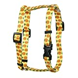 Yellow Dog Design Dog Leash For Large Dogs