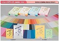 色画用紙(ニューカラーR)A3 50枚(一般色) 210 おうどいろ