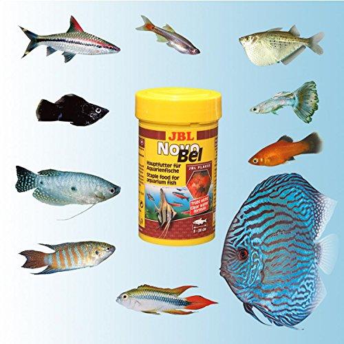 JBL NovoBel 30140 Alleinfutter für alle Aquarienfische, Flocken 1 l - 5