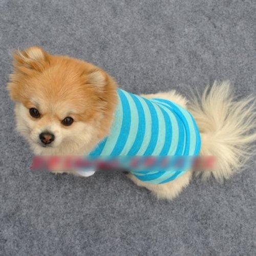 HuntGold 100% design de mode en coton rayé coloré t-shirt pour chien(blue Taille: XS)