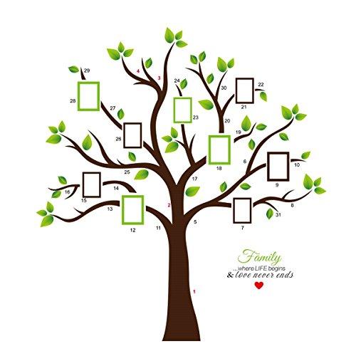 KiKa Monkey® PVC Riesig Schwarz Bilderrahmen Wandaufkleber Speicher Baum Vinyl Zweig Abnehmbare Wandtattoos (A)