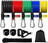 Exercise Resistance Bands Set (11pcs), Resistance Workout Bands with Door Anchor, Ankle Straps & Carrying Case, Great for Home Workouts, Physical Therapy, Gym Training, Yoga (100)