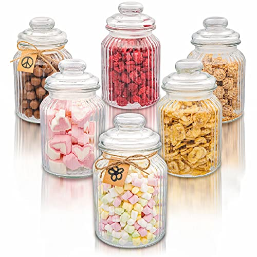 6 Bomboneras de Cristal con Tapa de Vidrio Estilo Vintage - Grandes 1 l - Hermeticos - Botes para Galletas, Caramelos