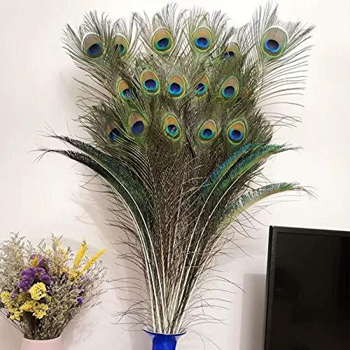 Hermosas plumas naturales plumas de pavo real, ojos, vestidos artesanales, sombreros, decoraciones artesanales para bodas, fiestas-20 plumas de pavo real con ojos grandes_Los 80cm-90cm