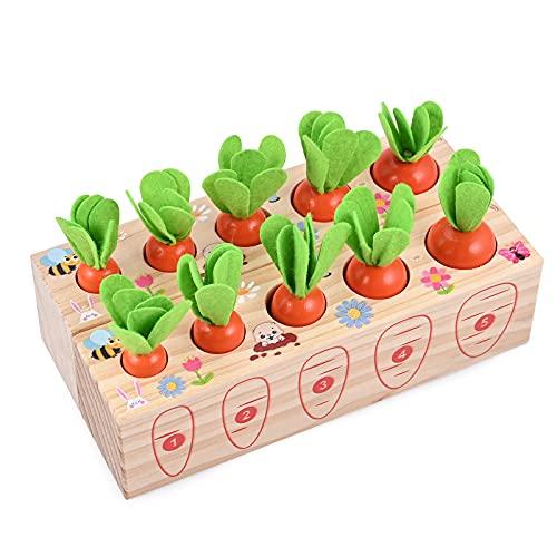 GOLDGE 2Blocs Jouets Montessori en Bois 10PCS Récolte de Carottes Motricité Forme Taille Fine Jeu...