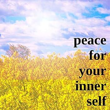 명상, 마음의 평정으로 행복감을 주어 스트레스 지수를 낮춰주는 온전한 행복을 위한 뇌파안정 테라피 클래식 피아노자장가 14 - 건강 회복이 느껴지는 행복감