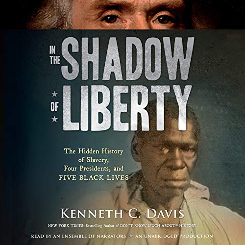 In the Shadow of Liberty audiobook cover art