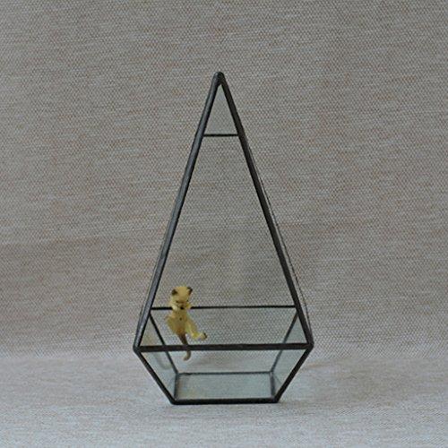 F Fityle Pyramide Glas Geometrischen Terrarium Box Tabletop - 12 * 12 * 24cm, Kupfer+Pyramide