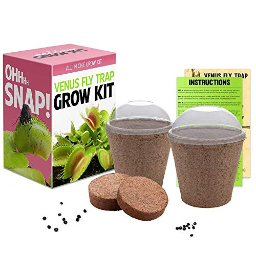 Venus Fly Trap Seeds Growing Kit - All in One Carnivorous Plant Growing Kit Gift Growing Chamber Germination Dionaea Muscipula