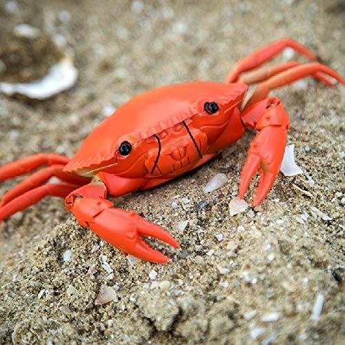 Eurowebb Crabe téléguidé radiocommandé Gris