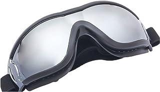 LYWER Barnglasögon Skidåkning Sport Glasögon Cykelglasögon Laboratory Glasögon Present (Color : F)