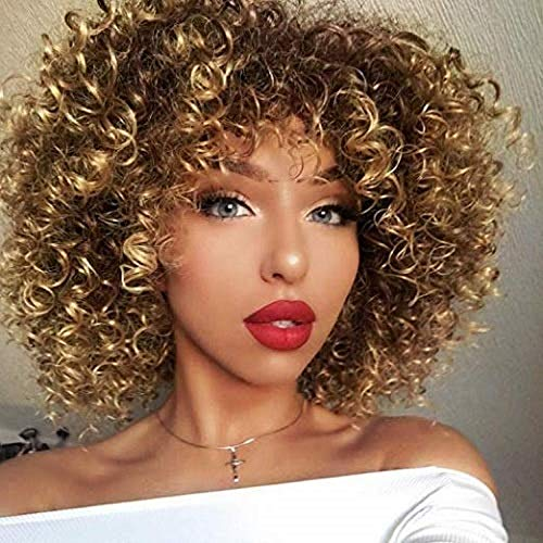 N&T Afro Short Curly Wigs for Black Women Synthetic Hair Ombre Blonde and Brown Wig for Women