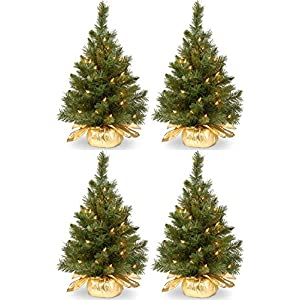 National Tree Company Pre-lit Artificial Mini Christmas Tree | Includes Small Lights and Cloth Bag Base | Majestic Fir – 2 ft