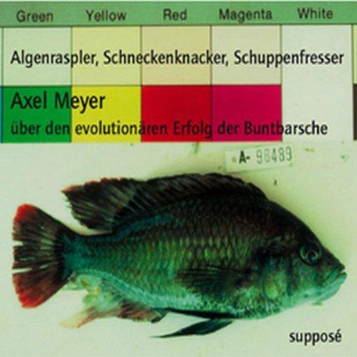 Algenraspler, Schneckenknacker, Schuppenfresser. Über den evolutionären Erfolg der Buntbarsche Titelbild
