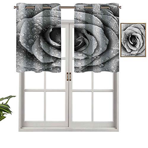 Hiiiman Cortinas con ojales y diseño de pétalos de rosa románticos con gotas de agua de lluvia, juego de 2, 106,7 x 60,9 cm para ventana de cocina