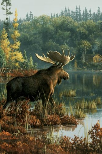Tree-Free Greetings Noteables Notecards In Reusable Embossed Tin, 12 Card Assortment, Recycled, 4 x 6 Inches, Northwoods Moose, Multi Color (76007) Photo #2