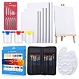 57 in 1 Acrylic Paint Kit,SYCEES Complete Professional Artist Painting Supplies Set,Art Paintbrush Sets for Kids and Adults & Beginners