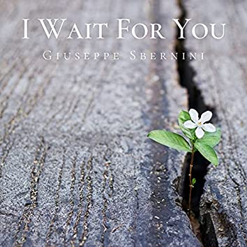 I Wait for You