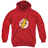 Youth Hoodie: Justice League - Destroyed Flash Logo Pullover Hoodie Size YM
